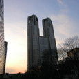 都庁の冬暮